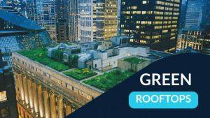 Green Roofs, Green Rooftops, Green Roofing, Green Rooftops Benefits, Green Rooftops building