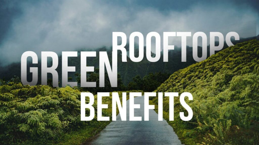 Green Rooftops,Green Rooftops Benefits,Benefits of Green rooftops