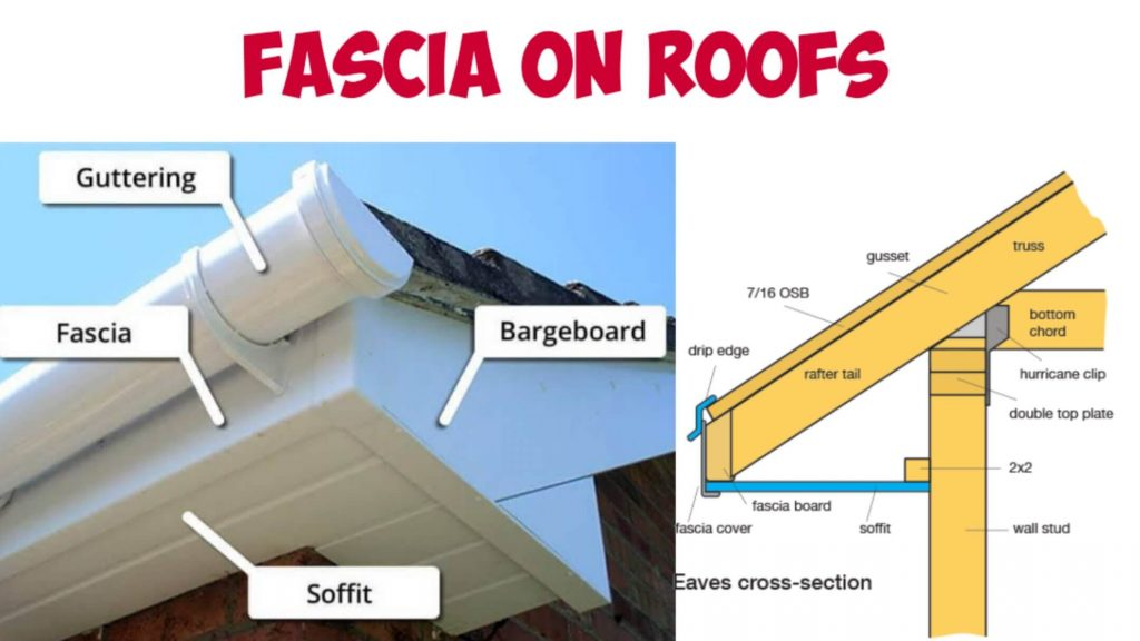Fascia of Roof, Fascia on Roofs