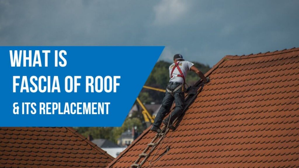 What is Fascia of Roof and Best 7 Step to Replace Fascia