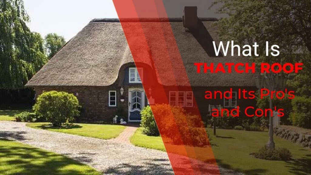 What is Thatch Roof and Its Advantages & Disadvantages 2021